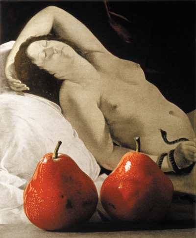 Two Pears After Artemisia